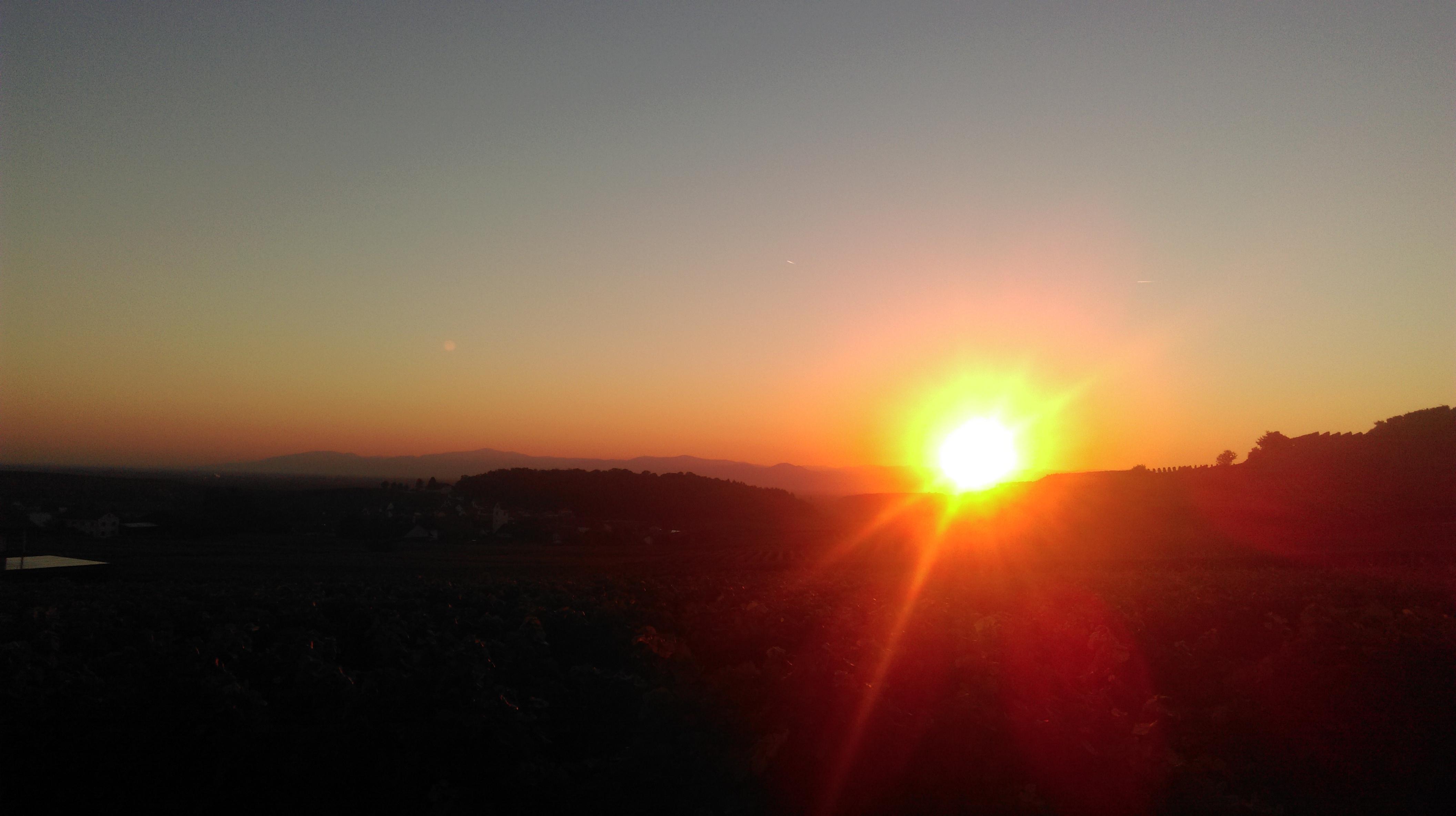 Sonnenuntergang über den Reben von Bischoffingen
